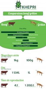 infographie v2_fr